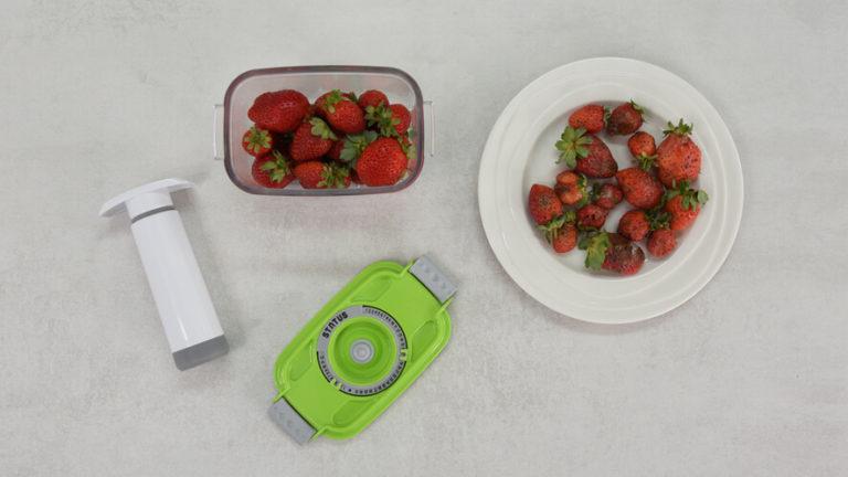 primerjava vakuumsko shranjenih jagod in jagod, ki so bile izpostavljene zraku in temperaturi