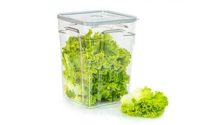 Gastro vakuumska posoda volumna 10 litrov z zeleno solato
