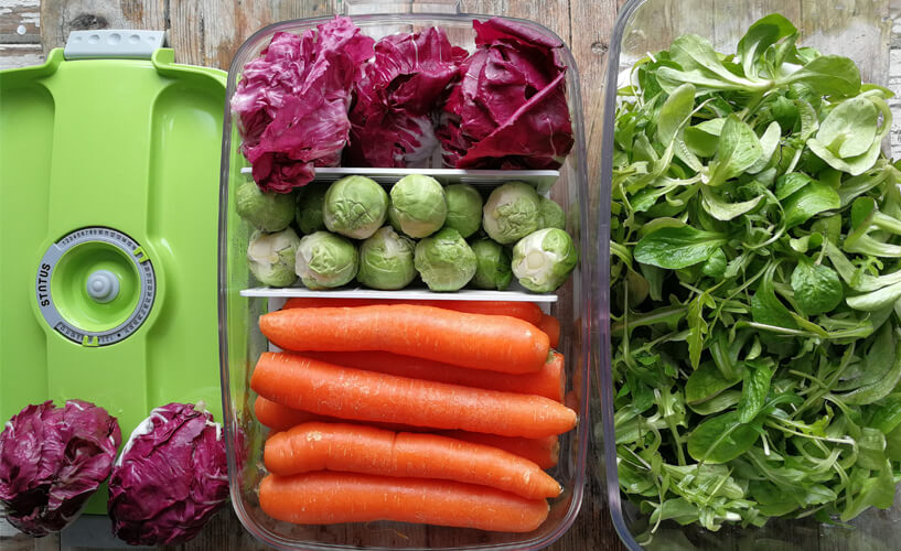 zelenjava v vakuumski posodi