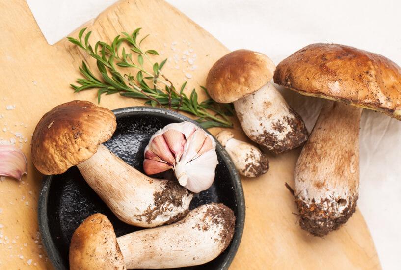 Ste vedeli, da imajo gobe intenzivnejši vonj in okus, ko jih posušite?
