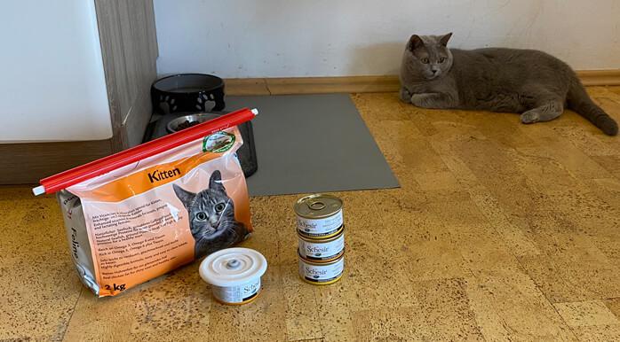 kako shraniti hrano za mačke